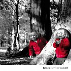Babes in the wood